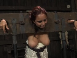 Sweet darling is 'til say no to sexy and coarse punishment